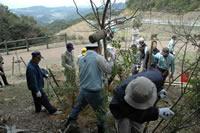 冠岳及びふれあい林道等の清掃活動と植樹